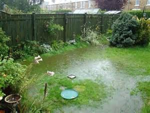 Water logged back garden