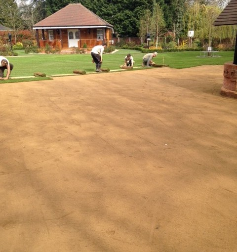New Laid Lawn in Hutton Mount, Shenfield, Essex