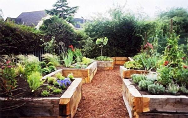 sensory garden and outdoor classroom for a school