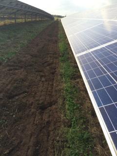 Solar Farm Landscaping